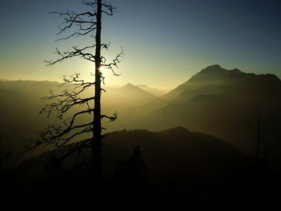 olaf-broders-alp-scenery-austria