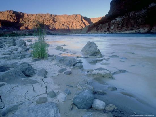 olaf-broders-colorado-river-glen-canyon-arizona-usa