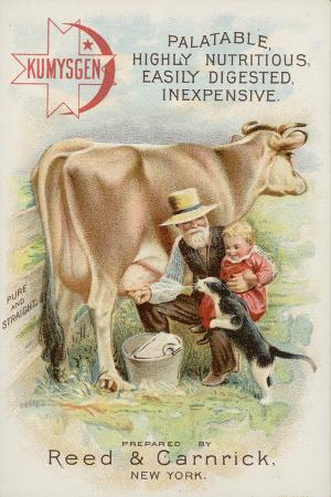 old-man-milking-cow-with-child-and-cat