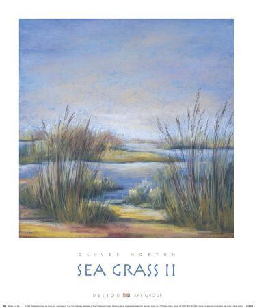 oliver-norton-sea-grass-ii