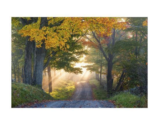 orah-moore-sun-streaming-through