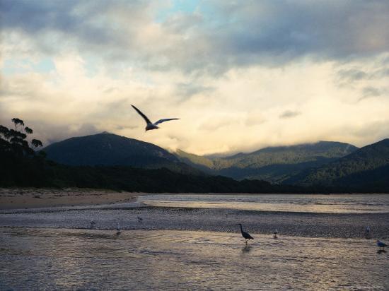 orien-harvey-sealers-cove-wilsons-promontory-national-park