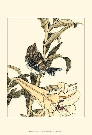 oriental-bird-on-branch-ii