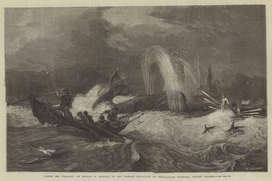 oswald-walters-brierly-south-sea-whaling-in-the-general-exhibition-of-water-colour-drawings-dudley-gallery