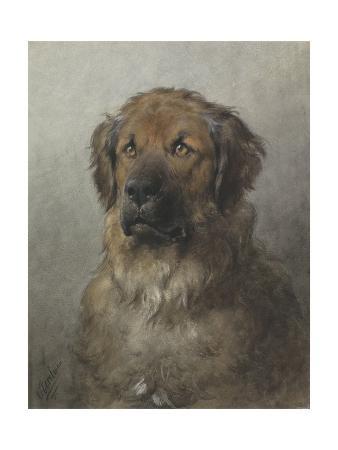 otto-eerelman-head-of-a-newfoundland-dog-c-1860-1920