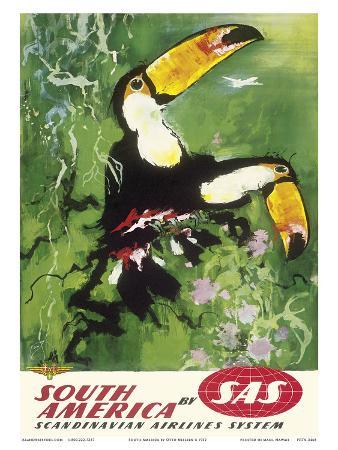 otto-nielsen-south-america-tocu-toucans-sas-scandinavian-airlines-system