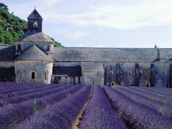 owen-franken-lavender-field-at-abbeye-du-senanque