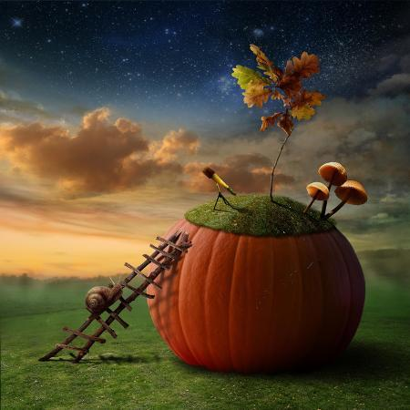 oxa-funny-poster-with-snail-astronomer-and-pumkin-observatory