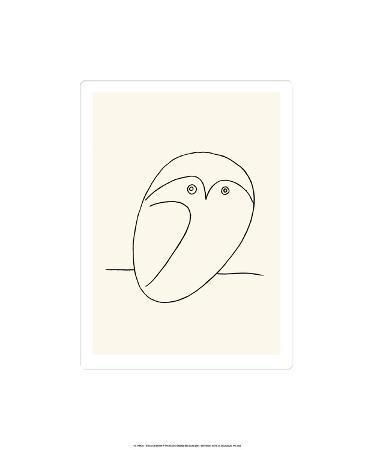 pablo-picasso-owl
