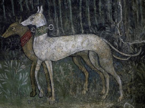 pair-of-greyhounds