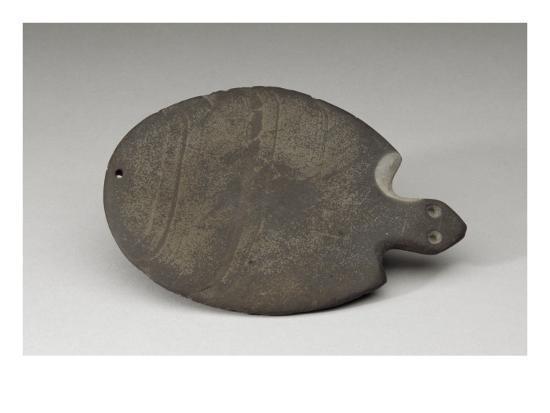 palette-en-forme-de-tortue-avec-la-tete-seule-indiquee