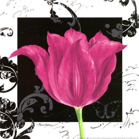 pamela-gladding-damask-tulip-iv