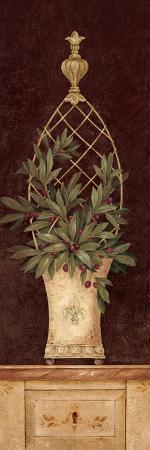pamela-gladding-olive-topiary-i