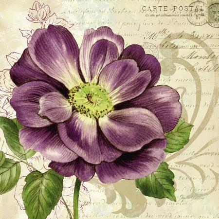 pamela-gladding-study-in-purple-i