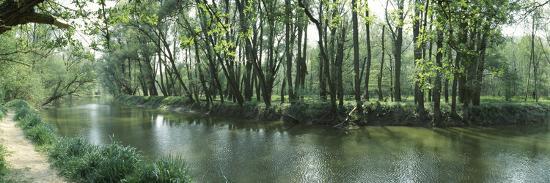 panoramic-images-riverside-forest-danube-river-hainburg-lower-austria-austria