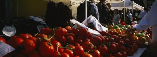 panoramic-images-tomatoes-chicago-farmer-s-market-chicago-illinois-usa