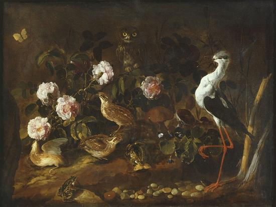 paolo-porpora-still-life-with-quail-an-owl-and-a-black-winged-stilt-c-1656