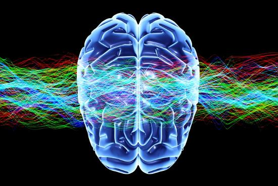 pasieka-human-brain-conceptual-artwork