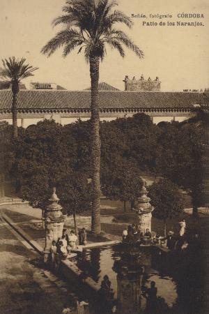 patio-de-los-naranjos-mosque-cathedral-of-cordoba-spain