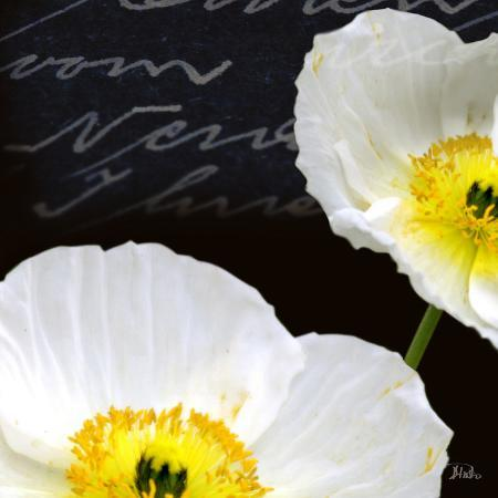 patricia-pinto-poppies-over-black-i