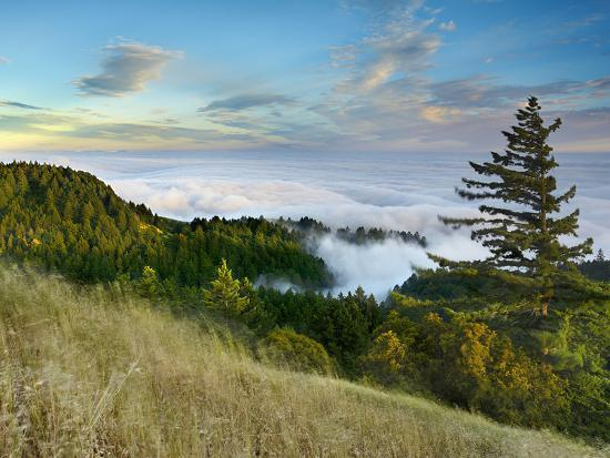 patrick-smith-fog-rolling-over-the-lower-hills-at-mt-tamalpais-on-a-late-spring-evening-california-usa