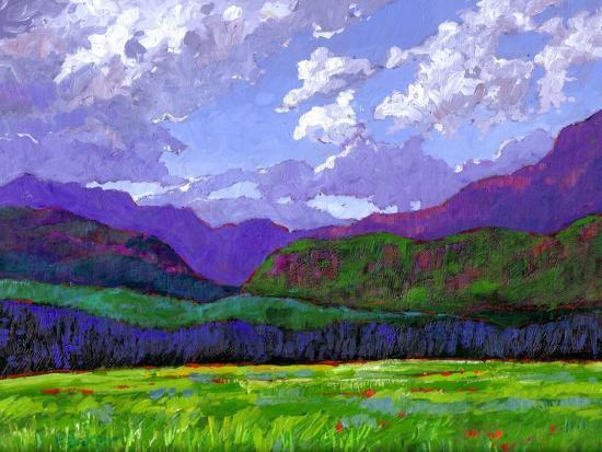 patty-baker-durango-landscape