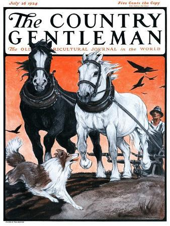 paul-bransom-plowing-the-field-country-gentleman-cover-july-26-1924