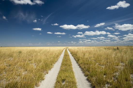 paul-souders-kalahari-desert-track-magadikgadi-pans-national-park-botswana