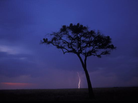 paul-souders-lightning-flashes-on-savanna-masai-mara-game-reserve-kenya