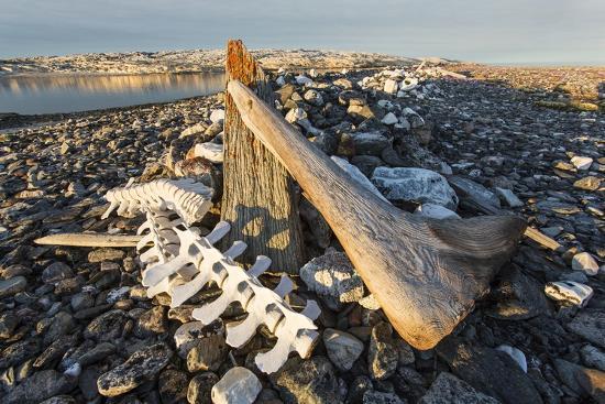 paul-souders-whalers-graves-deadman-island-nunavut-canada