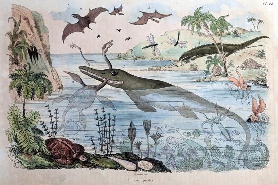 paul-stewart-1834-guerin-engraving-extinct-animals