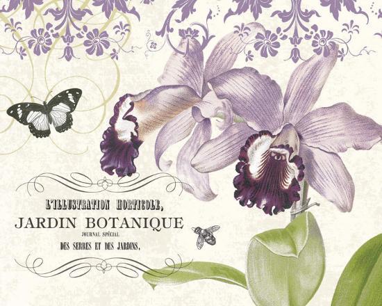 paula-scaletta-jardin-botanique-ii