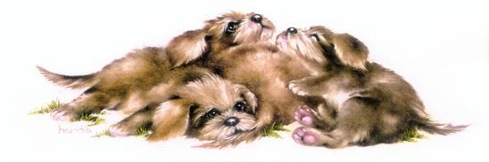peggy-harris-puppy-pile