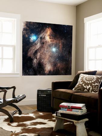 pelican-nebula