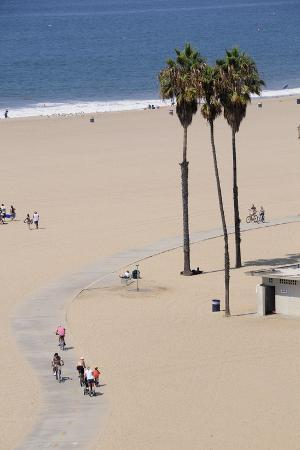 people-cycling-the-south-bay-cycle-route-in-the-town-of-santa-monica-near-los-angeles