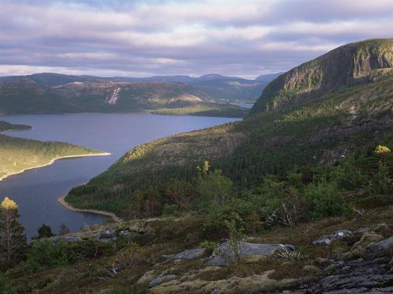 pete-cairns-late-evening-light-over-norwegian-fjord-lausvnes-nord-trondelag-norway-europe