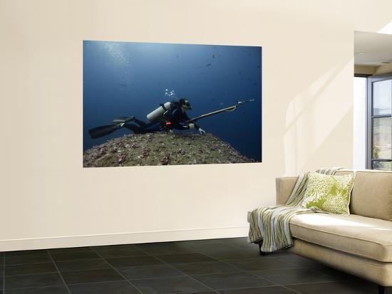 pete-oxford-diving-with-spear-gun-wolf-island-galapagos-islands-ecuador