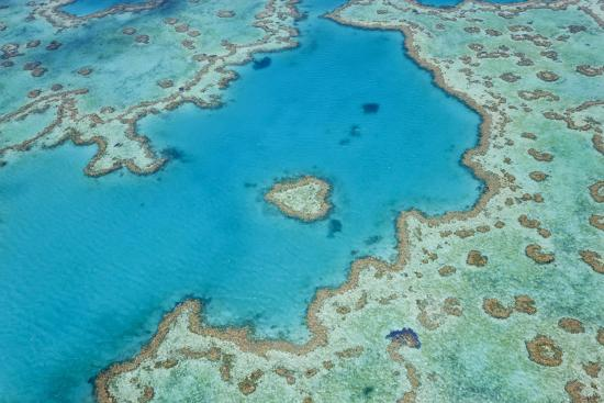 peter-adams-aerial-view-of-heart-reef-great-barrier-reef-queensland-australia