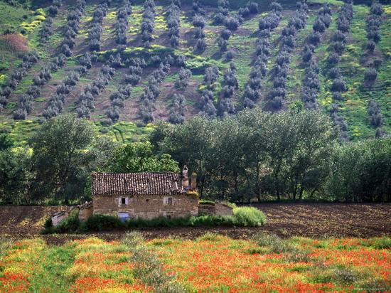 peter-adams-landscape-of-andalucia-spain