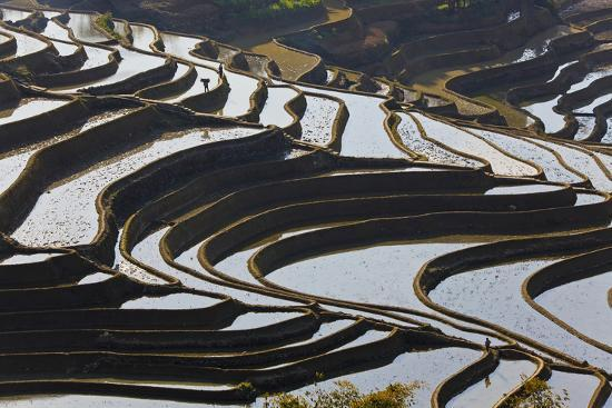 peter-adams-reflections-off-water-filled-rice-terraces-yuanyang-honghe-china