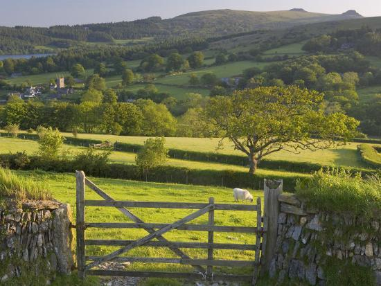 peter-adams-sheepstor-dartmoor-devon-england