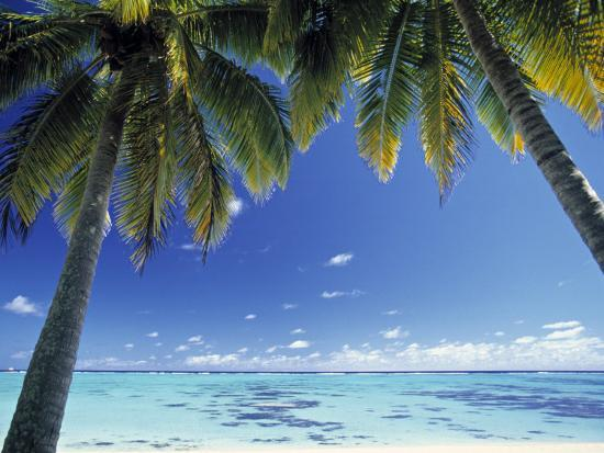 peter-adams-tropical-beach-north-aitutaki-island-cook-islands