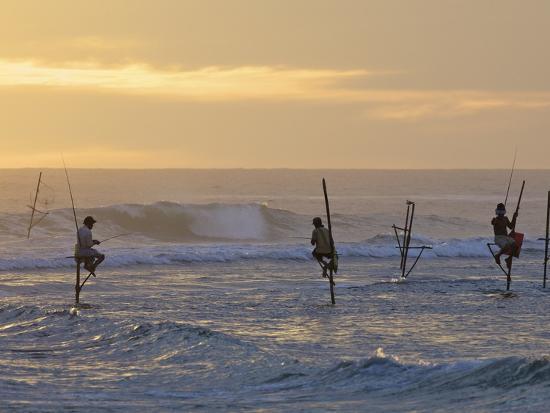 peter-barritt-stilt-fishermen-at-weligama-south-coast-sri-lanka-asia
