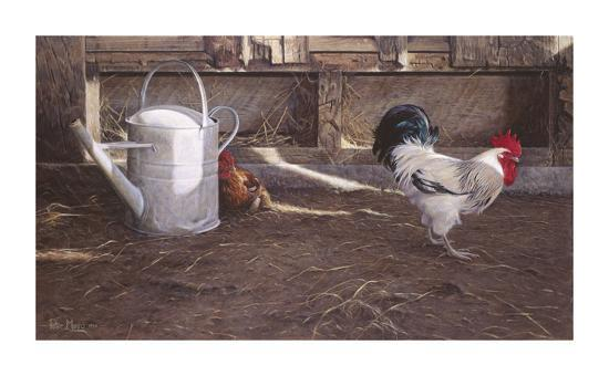 peter-munro-rooster-and-watering-can