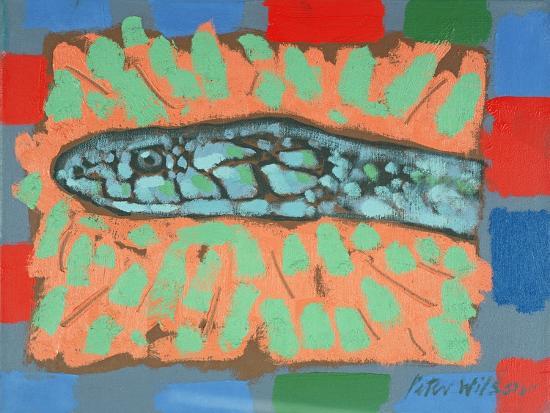 peter-wilson-snake-head-1996