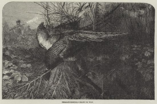 pheasant-shooting