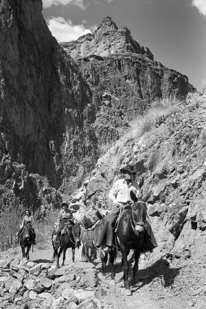 philip-gendreau-mule-riders-on-kaibab-trail