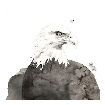 philippe-debongnie-eagle
