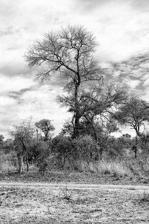philippe-hugonnard-awesome-south-africa-collection-b-w-african-landscape-iii