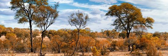 philippe-hugonnard-awesome-south-africa-collection-panoramic-beautiful-savannah-landscape-ii